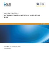 Analytique « Big Data » : architectures futures, compétences et feuilles de route du DSI