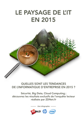Le paysage de l'IT en 2015